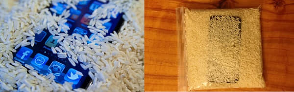 comment réparer l'iphone tombé dans l'eau avec du riz