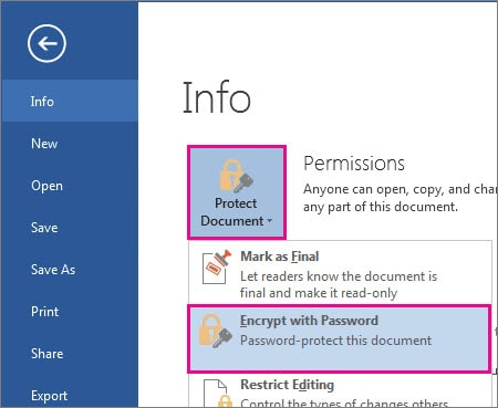 how to protect word documents from editing