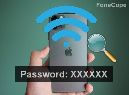 How to Find Saved WiFi Password on iPhone/iPad and Share